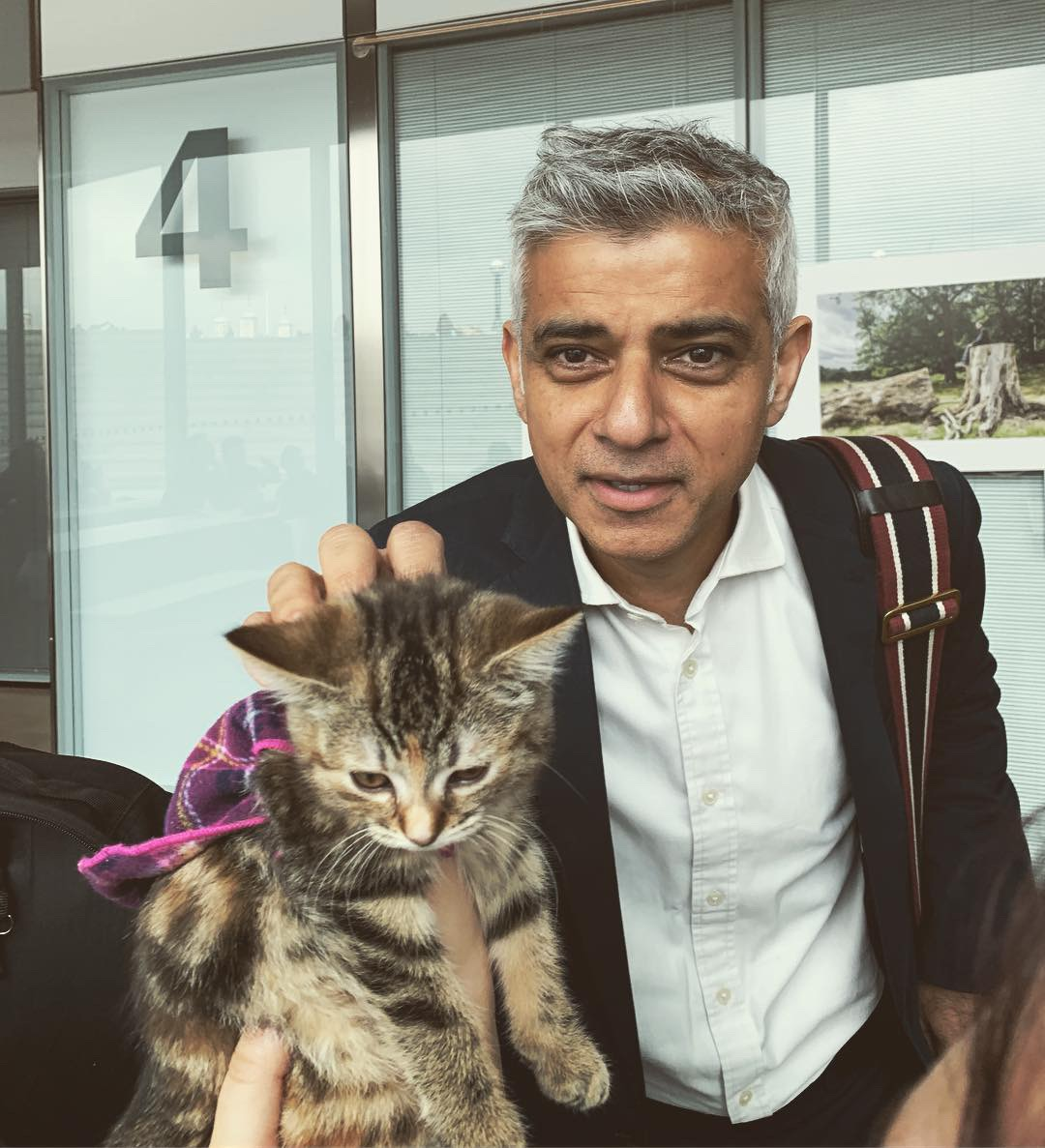 2019-05-03 (Quita the Kitty) Mayor of London