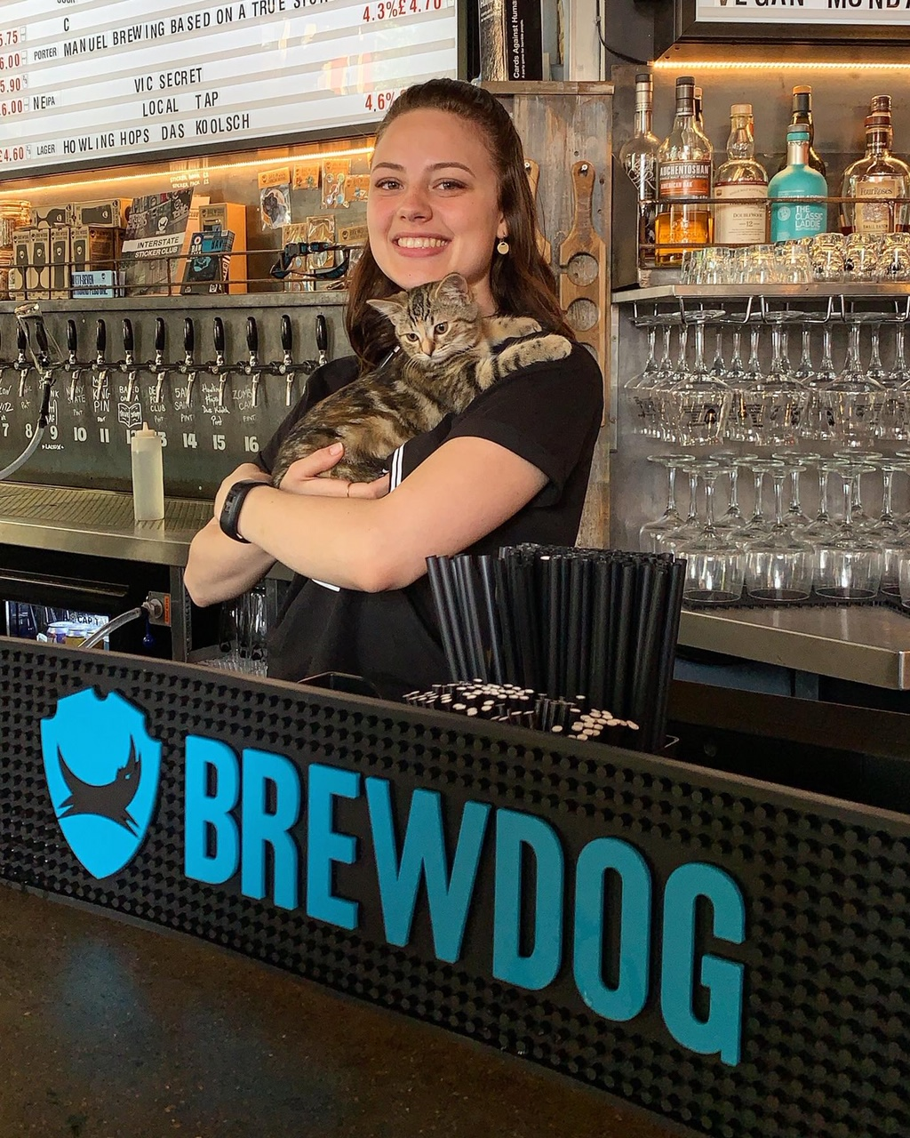 2019-05-16 (Quita the Kitty) Brewdog