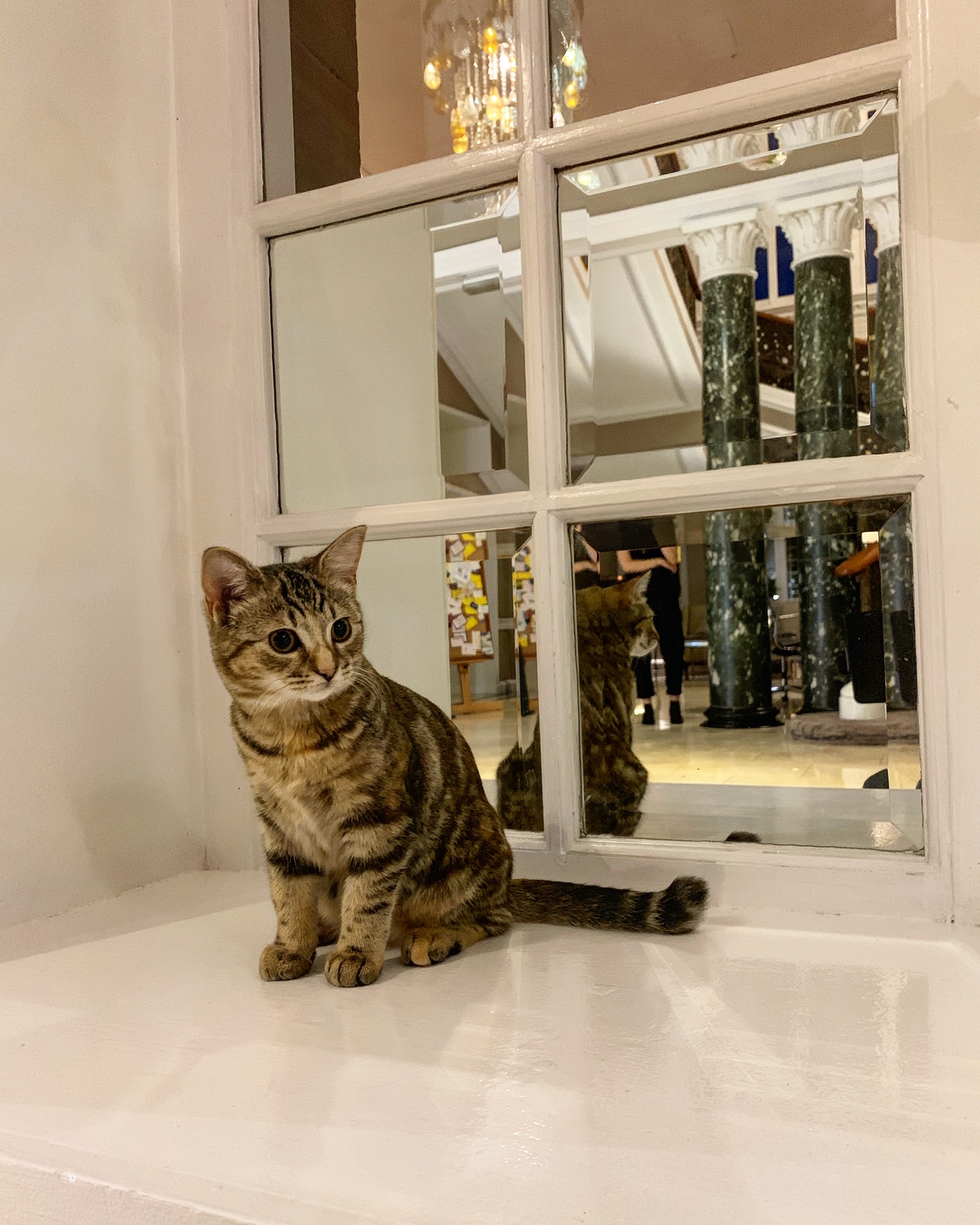 2019-07-18 (Quita the Kitty) Waldorf Astoria Edinburgh