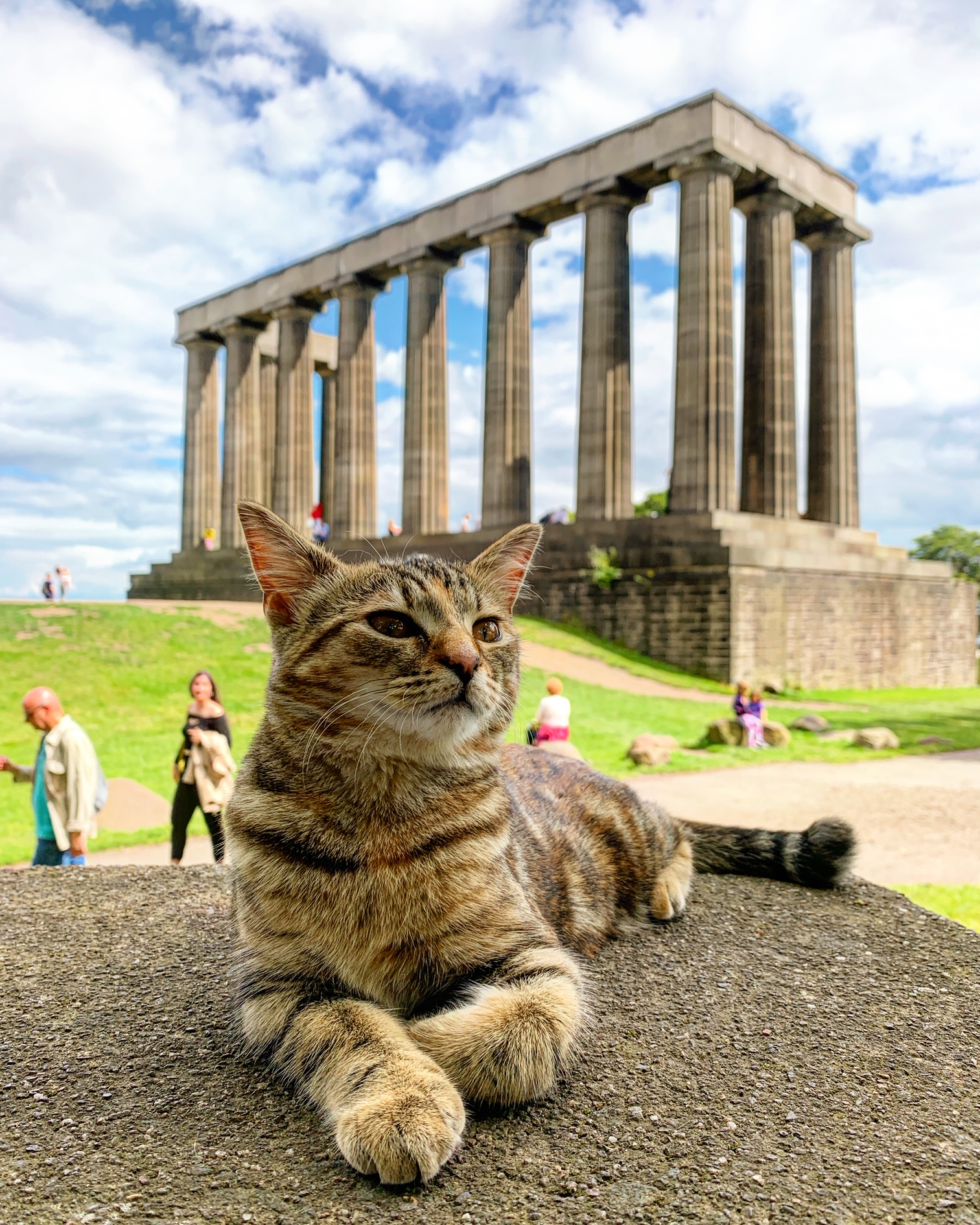 2019-07-19 (Quita the Kitty) National Monument of Scotland