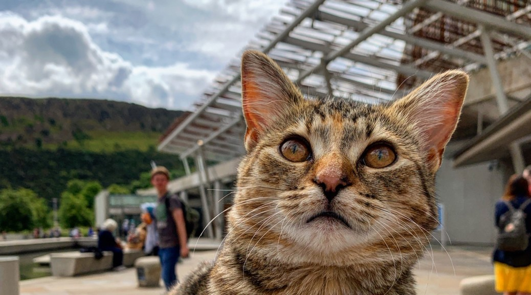 2019-07-19 (Quita the Kitty) Scottish Parliament