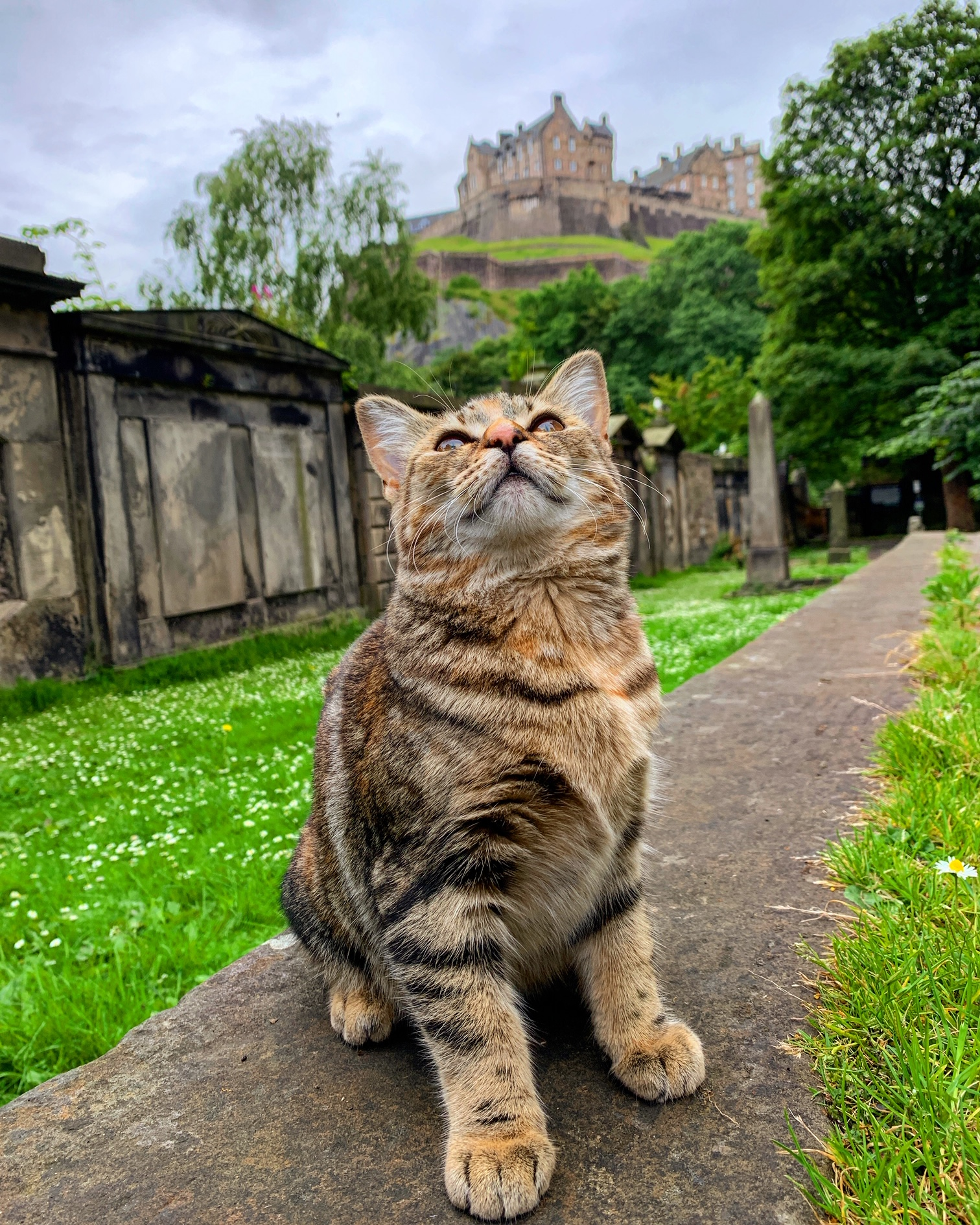 2019-07-20 (Quita the Kitty) Edinburgh Castle