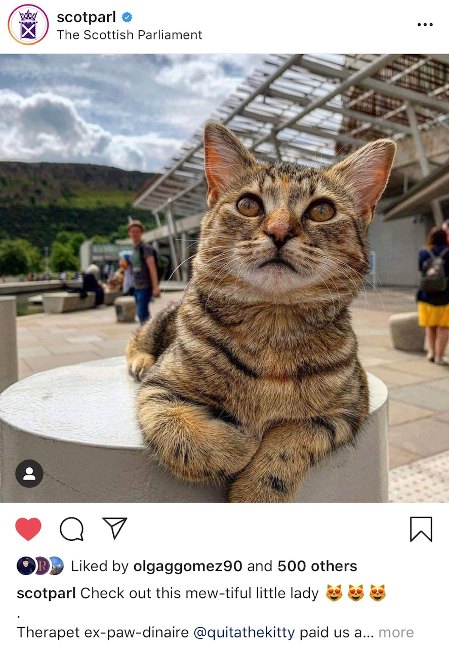2019-08-01 (Quita the Kitty) Scottish Parliament Instagram Post
