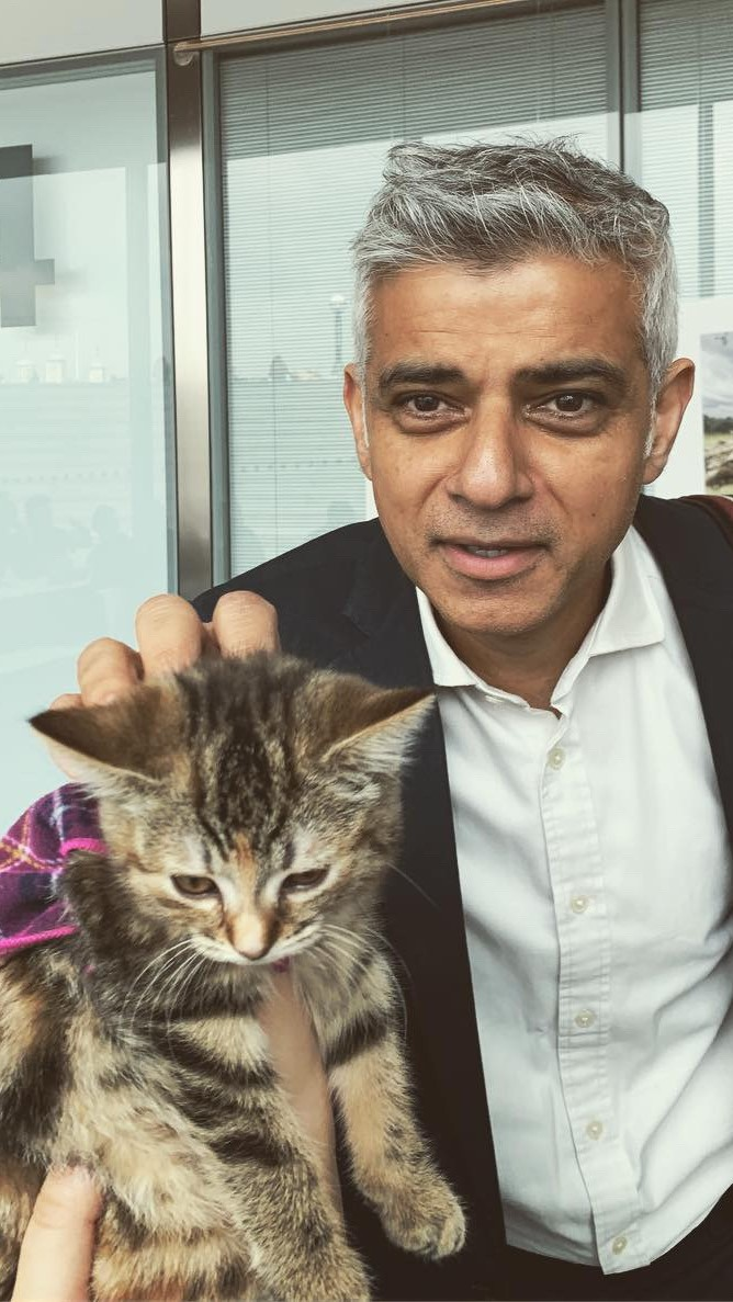 2019-05-03-Penrose-Care-Quita-the-Kitty-Sadiq-Khan-Good-Work-Standard